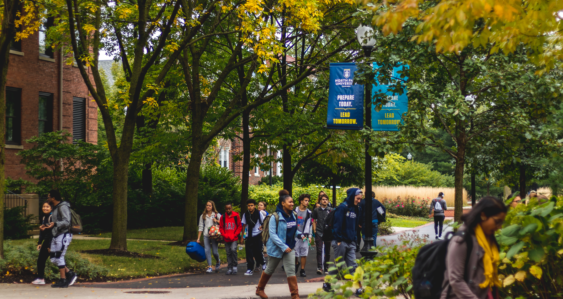 Undergraduate Admissions featured image background