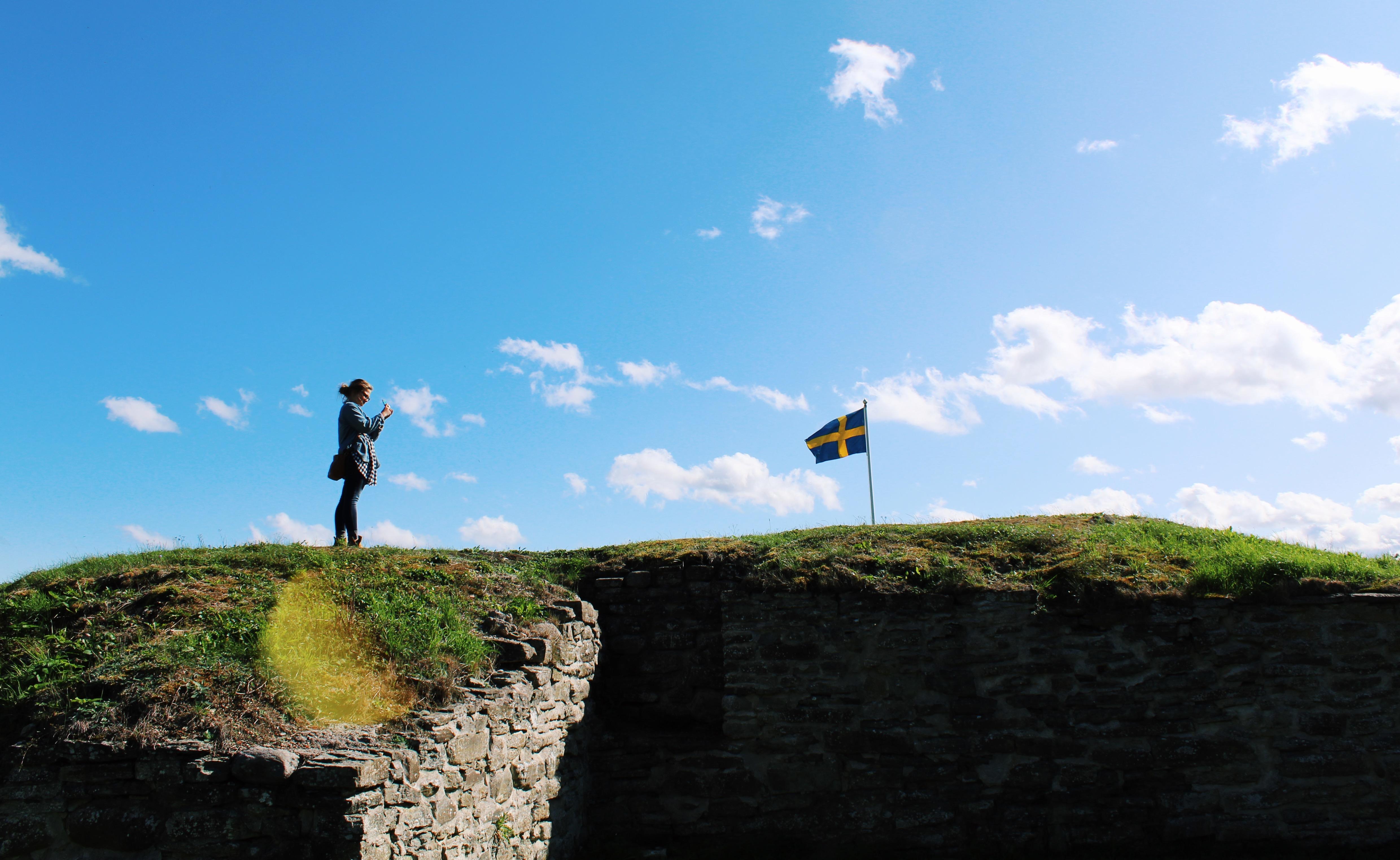 Scandinavian Studies (BA) featured image background
